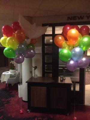 helium regenboog kleur ballonnen met duif kopie